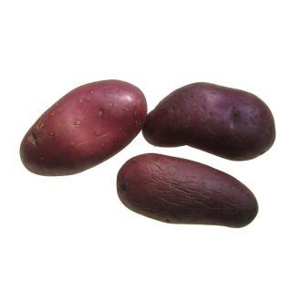 Kartoffel Red Fantasy, vfk rotschalig