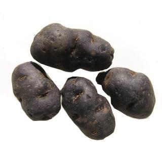 Kartoffel Blauer Schwede vfk