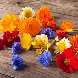 Blüten-Mix