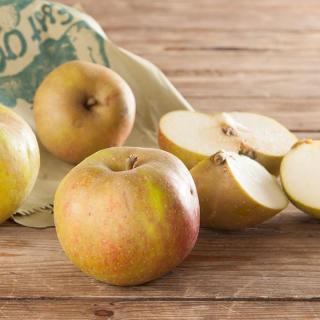 Apfel Boskoop  ´65+