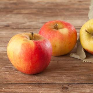 Kinder-Apfel Elstar im 1,5 kg Beutel