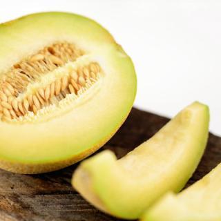 Honigmelone Galia