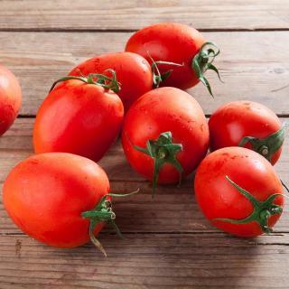 Tomaten Cocktail Roma