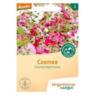 Cosmea, 4 gr Tüte