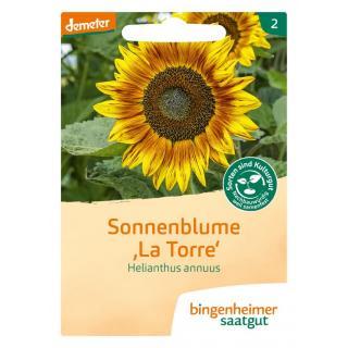 Sonnenblume, mehrblütig, 3 gr