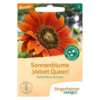 Sonnenblume Velvet Queen, 5 g