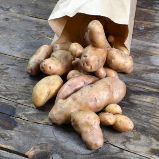Kartoffel Bamberger Hörnchen