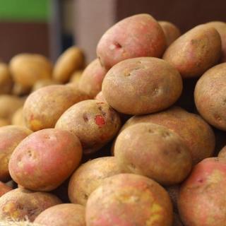 Kartoffel Heiderot