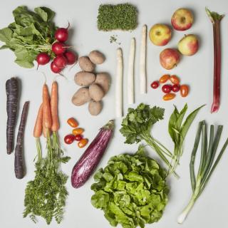 Gemüse-Special Kiste vegan